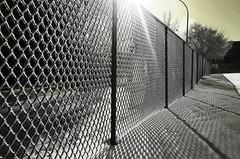 Frosty Fence Friday (Harry2010) Tags: winter sun canada fence frozen frost regina saskatchewan hoar omot