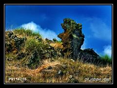 THE FETISH (Felipe 1930) Tags: nature afotando saariysqualitypictures art4u mmmilikeit ~exclusivity~ planetlandscape ~flickrland~ photographicworld myfavoriteworksofmyflickrfriends italy4u ladrndemomentos landscapes4u