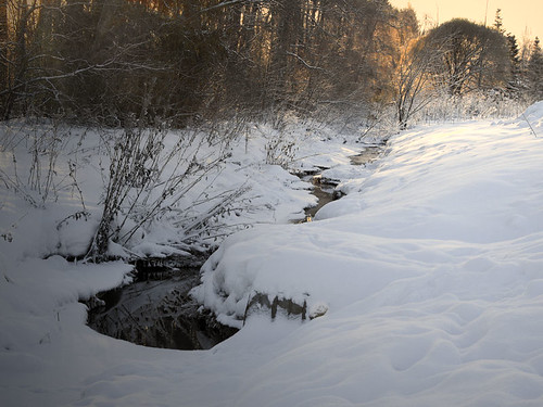 My Brook on the 20th of January, 2013