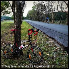 เช้าวันก่อน เกี่ยวก้อยไปกับหมอบน้อย แวะทักทายคุณลุง แกปั่นจักรยานชอปเปอร์ ไปเรื่อยๆ แต่ดูทะมัดทะแมงเหลือเกิน