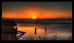 Morning Flight (Nick.Coombs) Tags: winter red sky orange sun water birds canon landscape flying rise 24105
