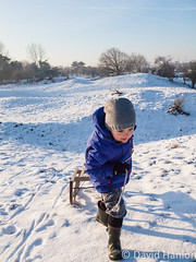 Boy pulling sledge (dave hanlon) Tags: winter holiday snow playing cold kids children fun outside outdoors happy vakantie play lol dunes dune sneeuw hill kinderen kind recreation pulling duinen pleasure awd sneeuwpret sledge sledging slee muts kou pret koud duin spelen jongen plezier uitrusten vakantiegevoel gelukkig laarzen geluk vreugde duingebied recreatie amsterdamsewaterleidingduinen dezilk kleuter sleeen sleetje blijheid