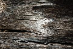 _DSC1565 (Radiogal73s) Tags: wood brown black texture nail knots splits