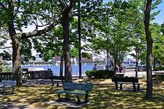 Sun and Shade (AntyDiluvian) Tags: boston massachusetts backbay charlesriver esplanade embankment sunshine shade bench