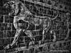 Persian Lions (Armin Hage) Tags: museedulouvre louvre paris france persian persianantiquesgallery achaemenidempire ancientiran iran susa persepolis dariusthegreatsusapalace dariusthegreat susapalace colouredglazedtiles glazedtiles