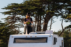 ArchitectGJA-4686.jpg (ArchitectGJA) Tags: lighthousepoint surfing californiababy hurley wetsuit santacruz ripcurl xcel lighthousefield california beach marineanimals coast cliffs streetphotography waves surfingsteamerlane oneill coastlife steamerlane montereybay