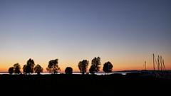 After Sunset #2 (macplatti) Tags: hchst vorarlberg austria aut