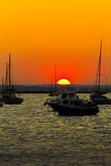 Sunset 5 (Paulfeb282) Tags: paulfeb282 paulcoxon paul coxon dorset sandbanks beach sunrise sunset sea front sunny day
