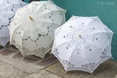 White Umbrellas . . . (We're Born to Loose, But We Live to Win) Tags: christopherholland athlondj italy venezia venice canon 50mm burano colorful umbrella white
