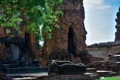 150501_DSC_1983-1 (mamaligamania) Tags: changwatphranakhonsiayuttha changwatphranakhonsiayutthaya th ayutthaya thailand budda