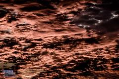 Abstract Sunrise (The Suss-Man (Mike)) Tags: clouds gainesville georgia hallcounty lake lakelanier lanier nature sky sonyslta77 sunrise sussmanimaging thesussman tree abstract 52in2016 themeabstract week34
