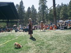 1609 Pickin in the Pines15 (nooccar) Tags: 1609 nooccar devonchristopheradams pickininthepines sept2016 september bluegrass bluegrassfestival contactmeforusage devoncadams dontstealart photobydevonchristopheradams