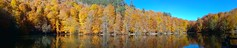 what is a filter? 1 (macide bahar) Tags: yedigller woods autumn panorama