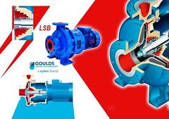 طلمبات السحب الطرفية - أحادية المراحل (Rheoserve Industrial Solutions) Tags: طلمبات طلمبة مضخات مضخة افقية سحب طرفى pump pumps end suction egypt