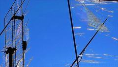 Natural Network (Konny D.) Tags: antennas antennen antenne antennes antenas spiderweb spinnennetz ragnatela toiledaraigne telaraa teiadearanha