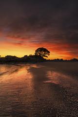 New Zealand Sunrise (Ed Kruger) Tags: 2016 allrightsreserved aotearoa edkruger millakruger mtmaunganui nz newzealand newzealandphotography northisland photoofnewzealand tauranga abaconda bayofplenty beach blue clouds copyrights horizon island kirillkruger kiwi landscape morning ocean pacific pacificocean qfse rodkruger sea seascape sky skyline summer sun sunny sunset sunshine surf tauaranga travel travelphotography water wave waves yellow