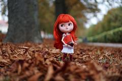 Blythe A Day 20 September 2016 - Something Seasonal (omgdolls) Tags: blythedoll blythe clone icydoll chili gamusina pureneemobody diorama tirinkatten blytheaday september