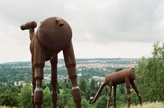 20800025 (greenishmagpie) Tags: praktica mtl5b film analog czech republic ceska republika praha prague zoo giraffes view