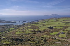 Ring of Kerry (Lux) Tags: samsungnx2000 samsung nx2000 fogliluca lux76 nobrainstudio trip ontheroad wild ireland eire irlanda irish land green