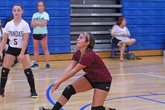 IMG_3787-01 (SJH Foto) Tags: girls volleyball high school bonnerprendergast private academy team tween teen teenager jv libero bump burst mode