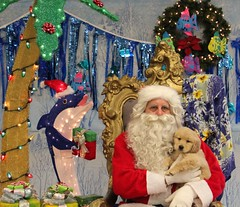 IMG_0073 (PMC Fresno) Tags: santa pet photos center medical spa pmc