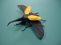 Hercules Beetle v2 (shuki.kato) Tags: paper insect flying origami beetle fold co
