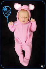 ! (MissSmile) Tags: baby kid child sweet piglet tender misssmile