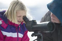 scoping002 (Deby Dixon) Tags: travel nature landscape photography nationalpark wolf wildlife moose fox yellowstonenationalpark wyoming bison wyo bullelk debydixonphotography