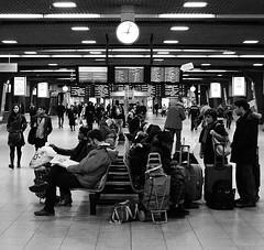 Brussel Zuid- Bruxelles Midi (NOel Sissau) Tags: brussels blackandwhite bw monochrome digital nikon waiting gare digitale bruxelles railwaystation brussel esperando wachten zw treinstation brusselzuid monochroom bruxellesmidi digitaal attendre brusselssouth d3100