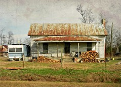 Old Tenant House and Small Trailer:  Pitt County, North Carolina (EdgecombePlanter) Tags: rural nc south southern trailer quaint tenant countryliving choppedwood southernculture tenanthouse