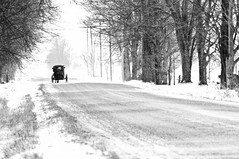 Old Order (ICT_photo) Tags: winter horse ontario buggy stjacobs mennonite