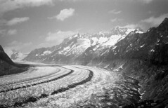 Aletsch Glacier (boscoppa) Tags: trip film 35mm switzerland kodak tmax olympus glacier 35 aletsch