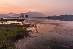 World in pink (PongsawatD) Tags: longexposure sunset tree nature water canon landscape thailand twilight explore reflect eos450d ef1740f4lusm blinkagain bestofblinkwinners blinksuperstars
