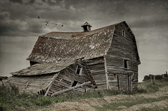 He aint heavy, he's my brother (Harry2010) Tags: door cloud canada bird abandoned architecture barn fence ruins shed saskatchewan prairies decayed
