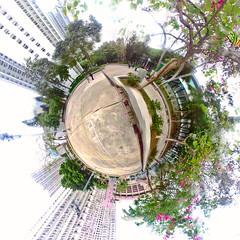 """""""紫荊綠葉小星球 Little Planet w/ purple orchids and green leaves"""" / 香港公共屋邨全景之形 Hong Kong Public Housing Panoramic Forms/ SML.20130126.360pano.YUmbrr.stereographic.SQ.P1"""