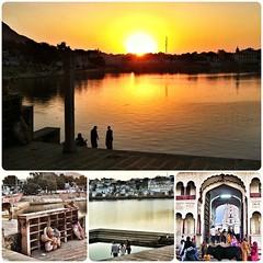India // Rajasthan 2012-10-30