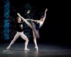 5b88441f59597d1c018582cc047a1421 (MODELLEUS2) Tags: ballet ballerina swanlake blackswan pasdedeux vladimirshklyarov danceopen jackdevant viktoriatereshkina danceopenolavinlinna2014 olavinlinnaballetgala2014