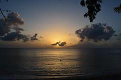 DSC_0415 copy (iKoriJoseph) Tags: vacation barbados beach beautiful colour concept clothing korina joseph photography canada sun summer sunset sunrise sunglasses water boat house villa