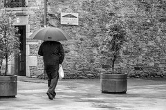 Lluvia de verano (inma F) Tags: lluvia agua paraguas caminodesantiago melide robado palasderei