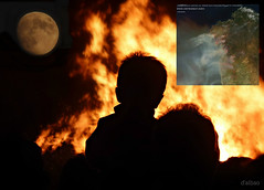 Arde Galicia ! (Franco DAlbao) Tags: francodalbao dalbao nikond60 galicia incendios fires terrorismo terrorism guerra war vndalos ejrcito army ataque attack fuego fire intereses interests organizacin organization destruccin destruction