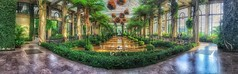 Inside the conservatory (kderricotte) Tags: panorama pano iphone longwoodgardens pennsylvania apple snapseed flower reflection hdr