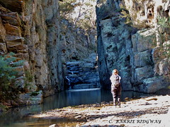 Spring Creek Gorge, NSW, near Canberra (BRDR images) Tags: australia nsw yanununbeyanreserve springcreek australianlandscape ourfragileearth wildernessphotography bushwalking