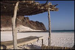 DSC_6793 (Sgaffo) Tags: yemen travelling 20072008 socotra