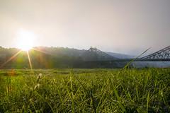 Peeking through the fog (derliebewolf) Tags: foveon sigma sigmadp1x sunrise dresden sunstar flare travel commute commuting cycling hiking earlybird earlymorning fog haze clouds sun sky gree meadows