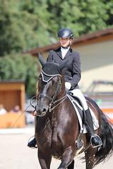 IMG_7774 (dreiwn) Tags: dressage dressur dressuur pferd reitturnier turnierreiten pferdesport horse horseback horseriding equestrian reitverein dressurprfung kandare doublebridle reiten pferde reitplatz ridingarena