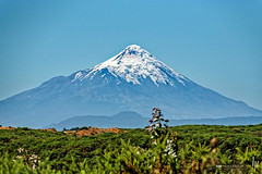 Volcn Osorno (hapePHOTOGRAPHIX) Tags: 152chl amricadelsur chile loslagos nikond750 southamerica sdamerika volcnosorno hapephotographix fognlosalerces berg mountain vulkan schnee snow nieve puertovaras xregin cl