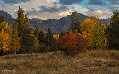 Autumn in the Tetons (buffdawgus) Tags: autumn canon5dmarkiii canon70200mm28l fall grandtetonnationalpark granitecanyon granitecanyontrailhead landscape lightroom5 tetons wyoming