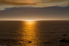 golden light (zora_schaf) Tags: goldenlight goldeneslicht california kalifornien highway1 kste usa unitedstates zoraschaf water pazifik lichtstrahl