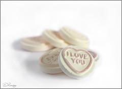 Sweetheart (Donna Rowley) Tags: macro sweet candy love heart loveheart valentine romance