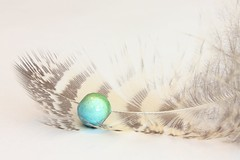 102 (2) Delightful Surprise (srypstra) Tags: feather bead